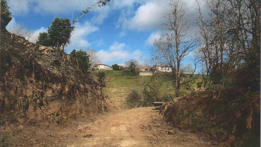 El ensanchamiento de la vía verde no cuenta con permiso de obras y ha supuesto la tala de arbolado autóctono.