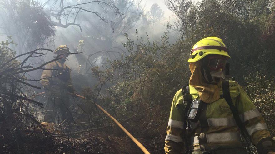 Efectivos de bomberos trabajan en las tareas de extinción del incendio de Artana