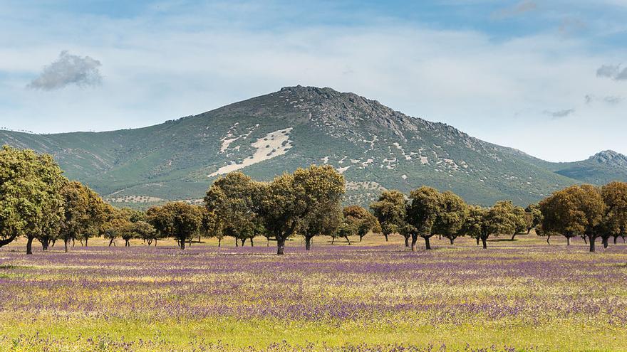 Montes de Toledo desde la localidad de Navahermosa