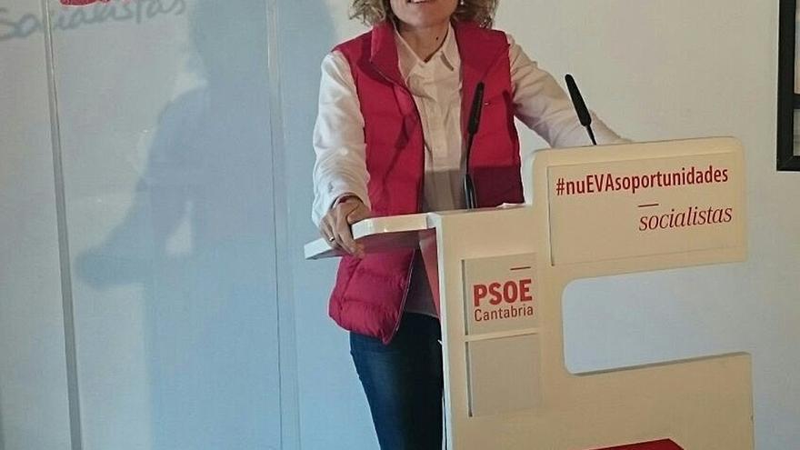 """Díaz Tezanos (PSOE) llama a """"jubilar"""" a """"viejos dirigentes cansados"""" y a quien gobierna """"contra"""" los cántabros"""