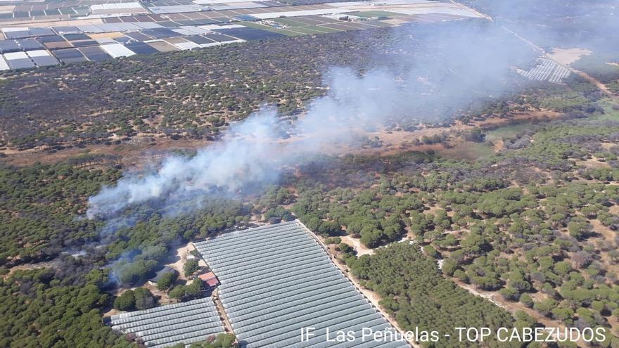 Estabilizado un incendio forestal en el paraje de Las Peñuelas, en Moguer