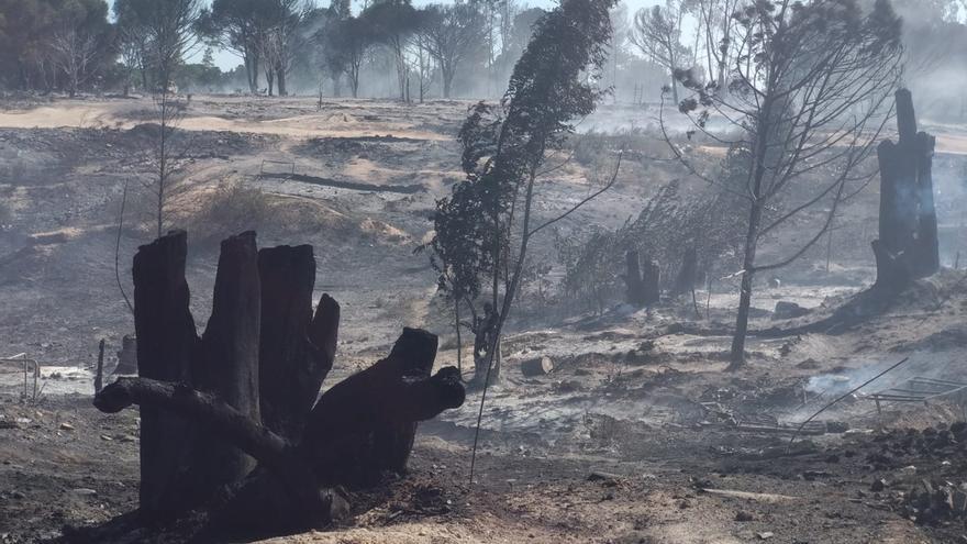 Un incendio en un asentamiento de Palos calcina 67 chabolas y provoca el desalojo de 200 personas