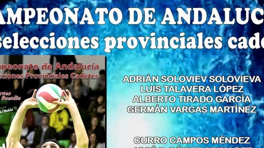 Voleibol: El Manuel de Falla estará representado en la Selección Sevillana
