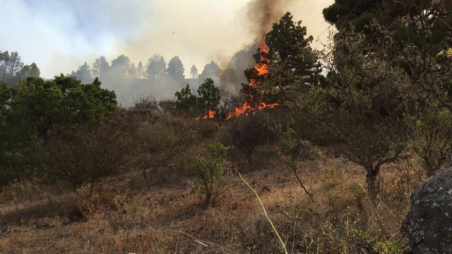 Incendio en El Paso en La Palma @AT_Brif