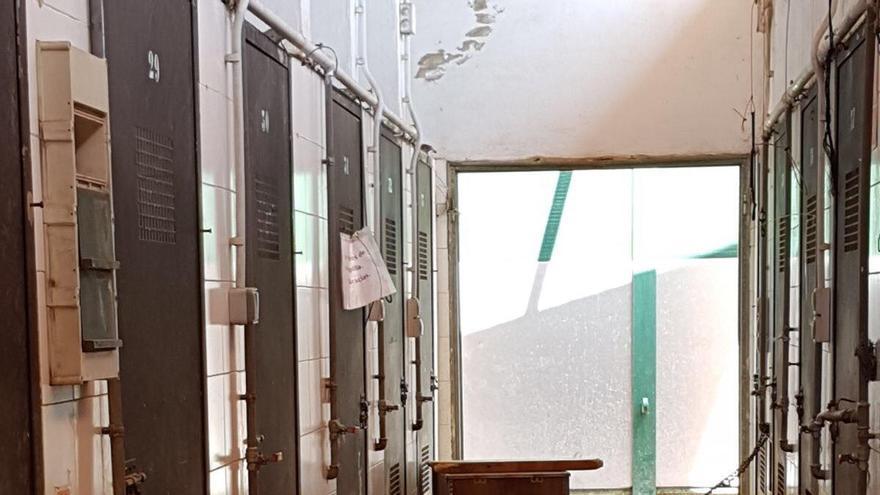 Interior de las instalaciones del centro de adopción de animales de València