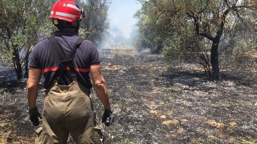 Sofocado el incendio de Bormujos y declarado otro en una ladera de Camas