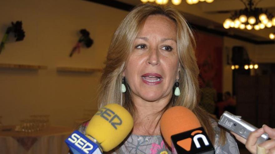 El PSOE definirá mañana su estrategia sanitaria para esta legislatura