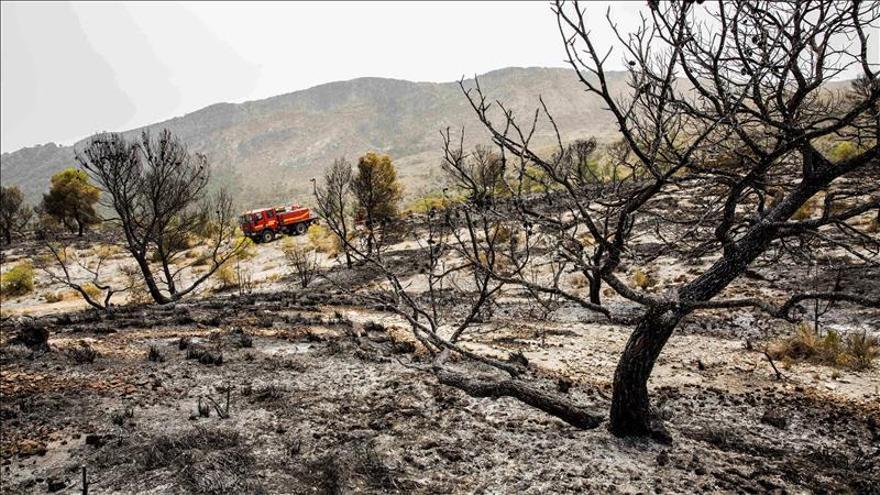 Controlado el incendio en la sierra de El Almorchón, en Cieza