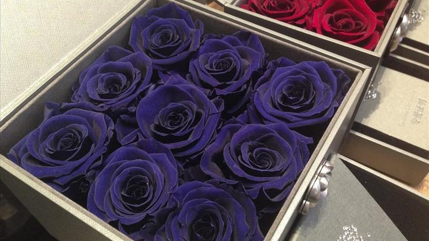 Las rosas rojas de Ecuador esperan a los enamorados en los mercados de medio mundo