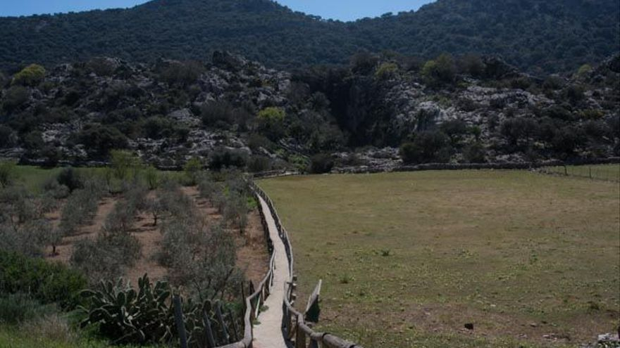 Sendero de acceso a la Sima de Villaluenga.