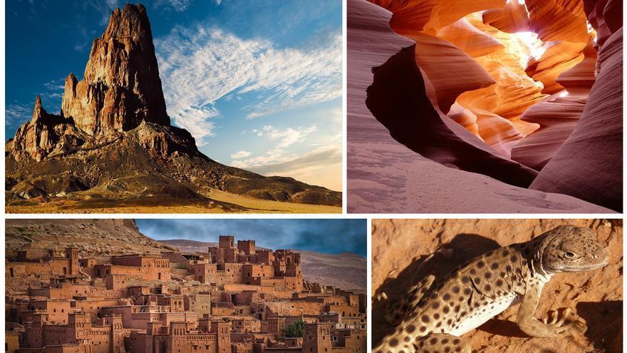 Los valores del desierto