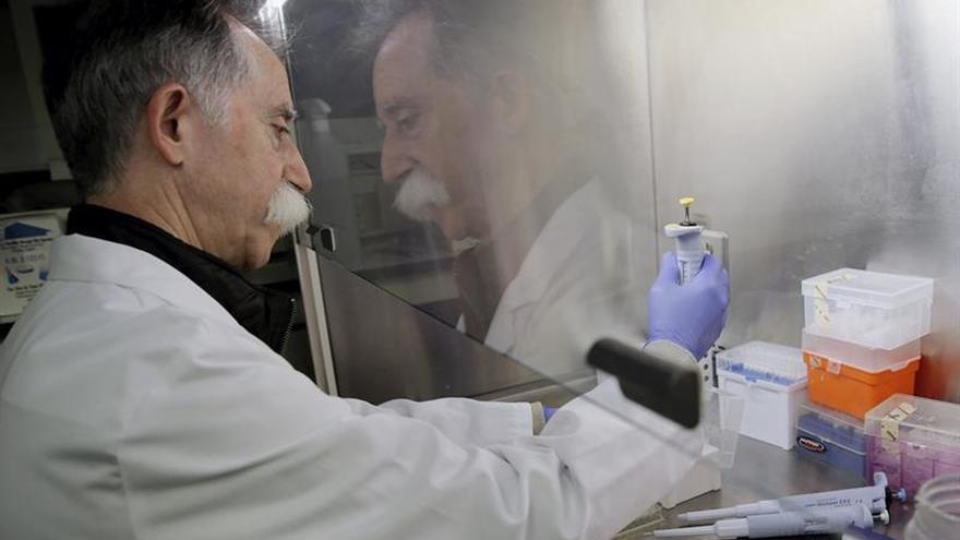 Crean un medicamento genético que hace efectiva la vacuna contra el cáncer