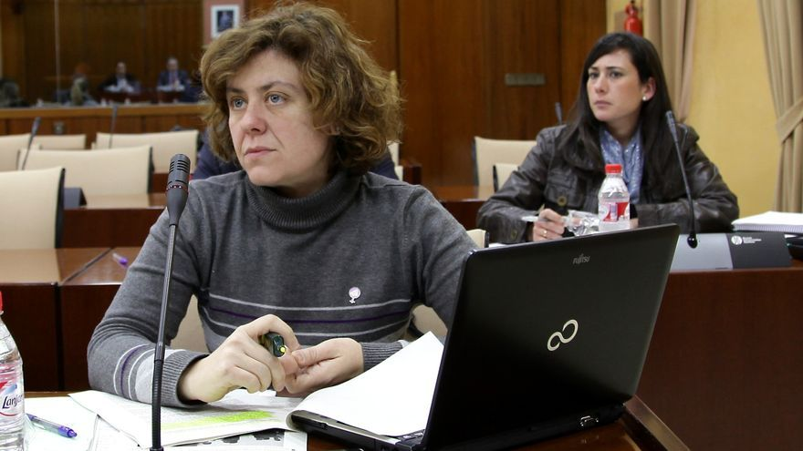 """Doblas (IULV-CA) anima a """"todas las mujeres casadas"""" a reivindicar un sueldo tras conocerse el salario de la Reina Sofía"""