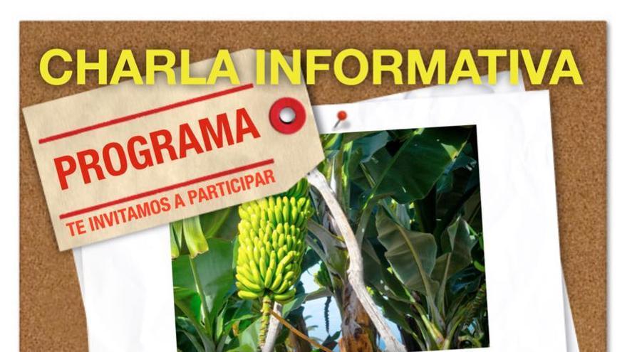 Cartel de la jornada que se celebrará en Puntallana