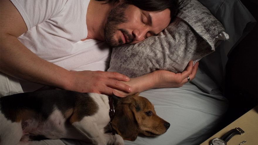 Keanu como John Wick y su cachorro de Beagle en la primera entrega
