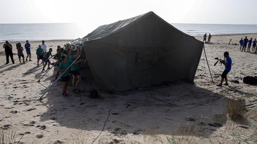 Vigilan 24 horas el nido de tortuga boba que desovó en una playa de Valencia