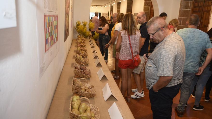 Visitantes en la Feria de la Papa de Gran Canaria, celebrada en Teror.