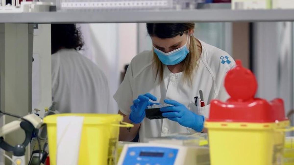 Test PCR para detectar la COVID-19