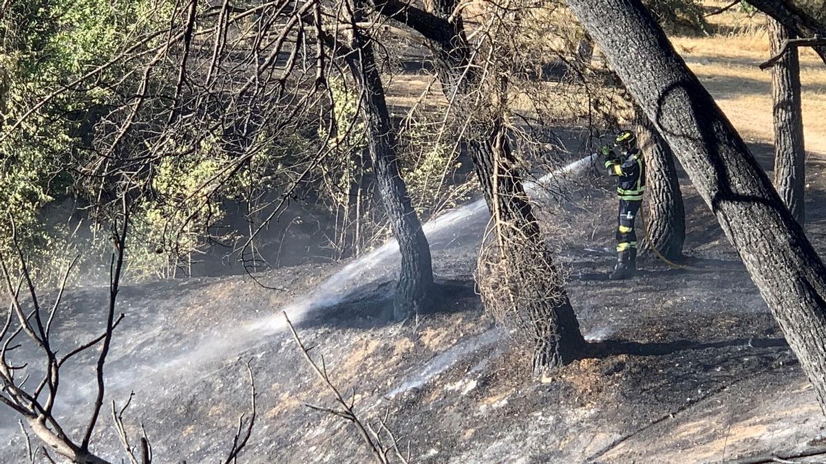 Un bombero trabaja en la extinción del incendio en el parque situado bajo el Hospital Clínico de Madrid