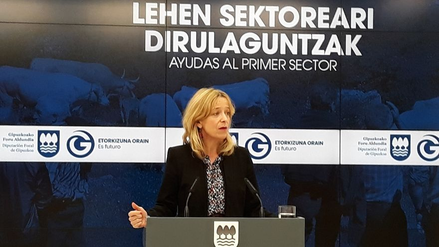 Diputación de Gipuzkoa aprueba, por primera vez, subvenciones para el alumnado de los euskaltegis