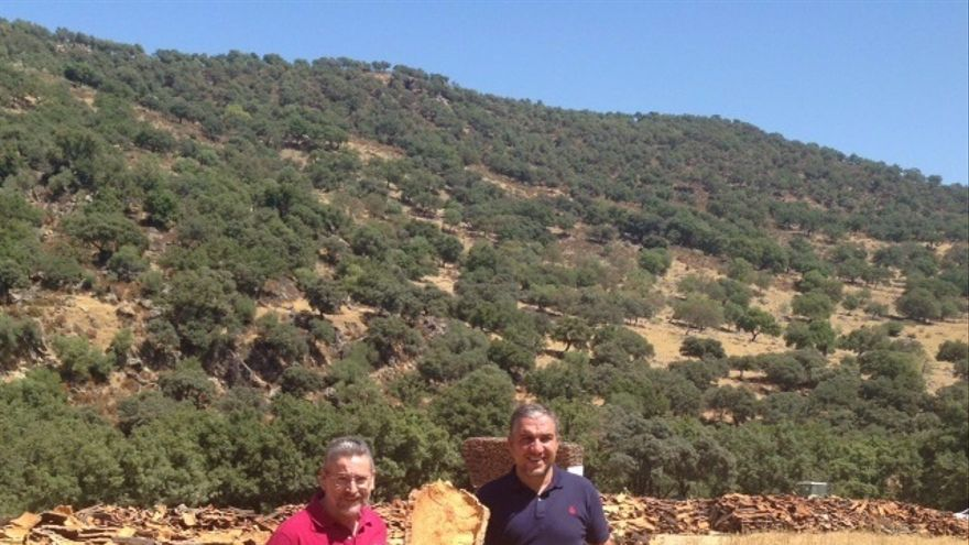 La Serranía de Ronda prevé una producción de corcho de un 30% superior a 2015