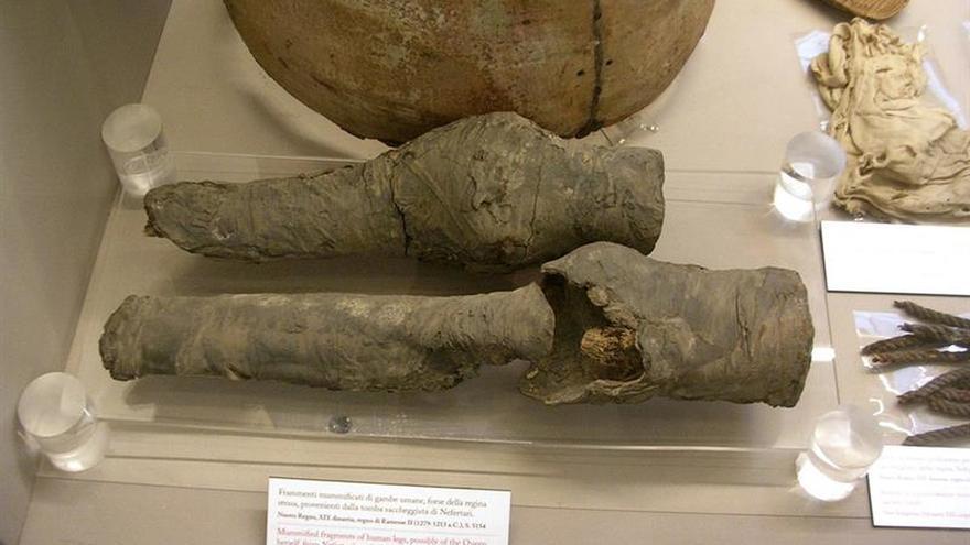 Arqueólogos atribuyen unas piernas momificadas a la reina egipcia Nefertari