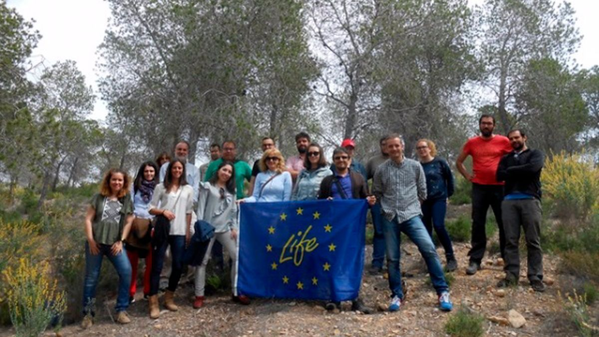 Proyecto Life Forest.