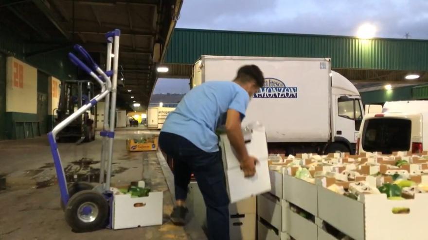 El campo se moviliza para llevar el producto local a los niños de Gran Canaria