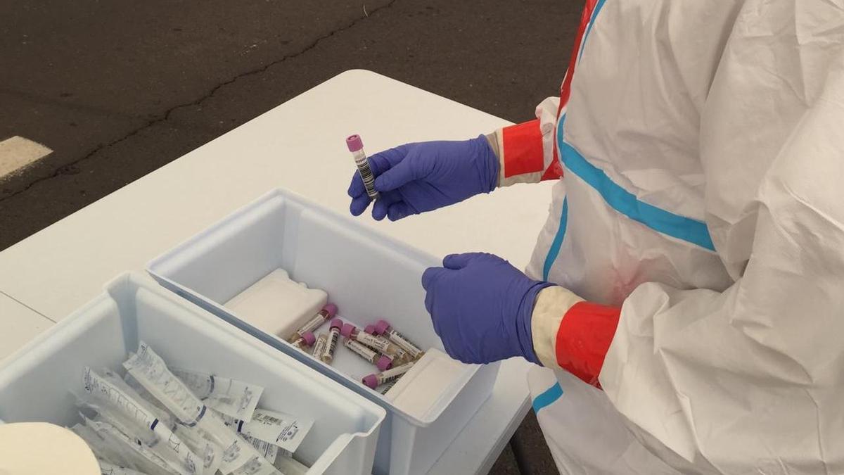 Muestras para realizar PCR.