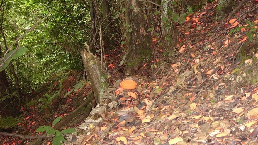 Imagen del monte de Lezama que albergó el campo de tiro con platos desperdigados.