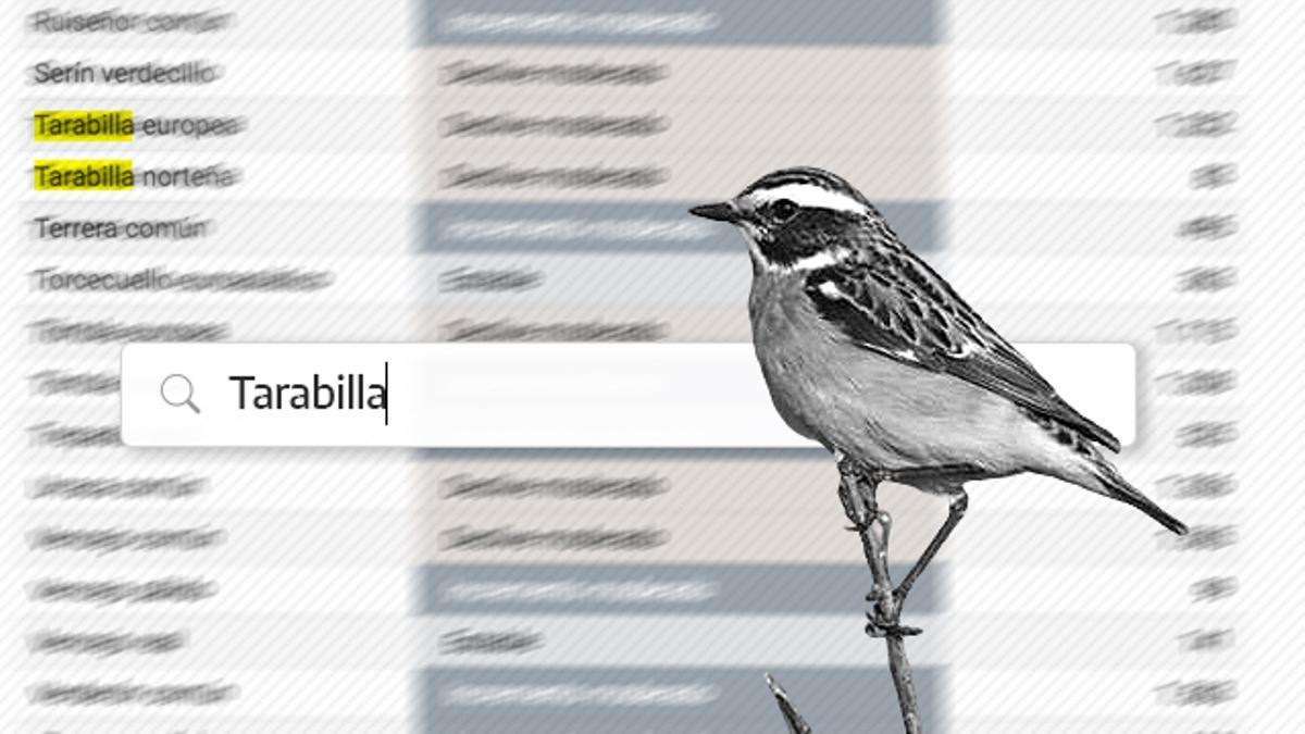 La situación de las 100 especies más comunes en España.