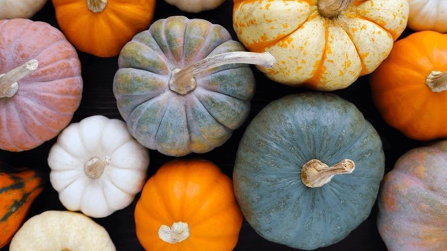 Foto: Foodrevolution.org