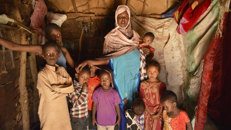 Hodo y sus nueve hijos viven desde hace tres años en un habitáculo hecho con ramas, sacos y mantas en un asentamiento para refugiados climáticos a las afueras de la capital de Somalilandia