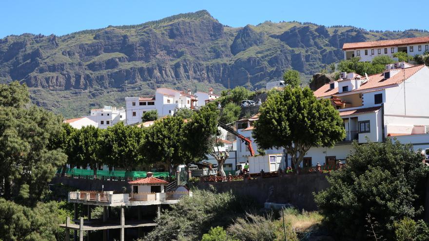 Vista de la calle Doctor Domingo Hernández Guerra mientras los obreros trabajan en la retirada de los árboles.