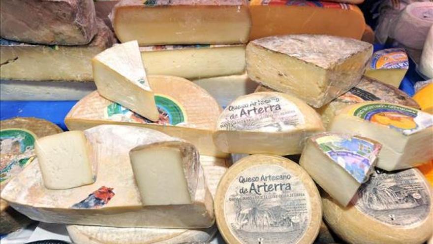 Varios quesos de origen grancanario a la venta en un establecimiento. EFE/Archivo