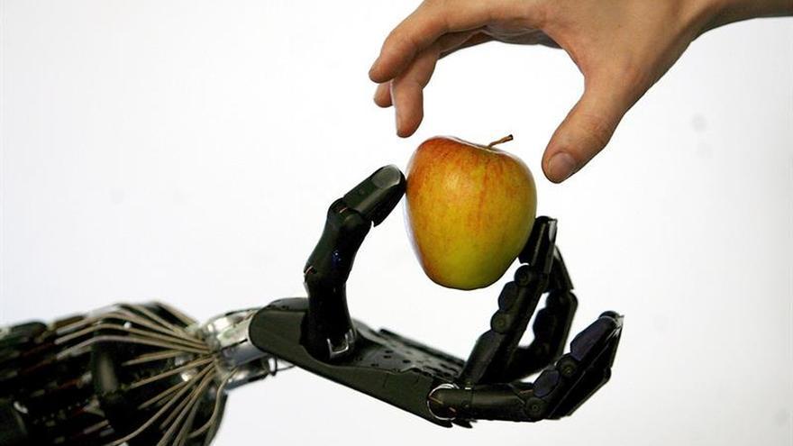 """Robots y humanos, una relación de """"amistad"""" cada vez más prometedora"""