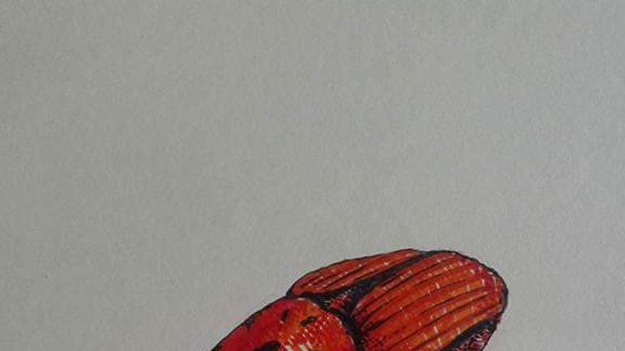 Obra de Mateo Ripoll, en la exposición en la casa okupa El Retal