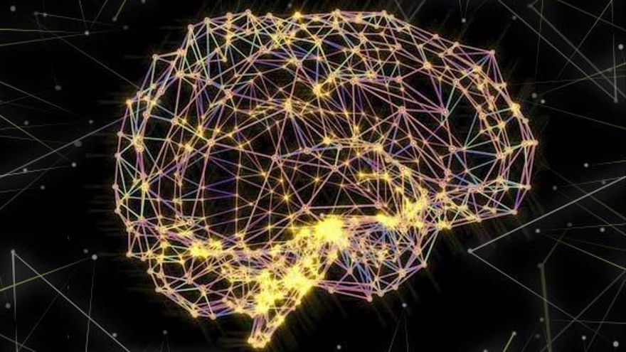 El cerebro es capaz de regenerar hasta 1400 neuronas diarias. (DP).