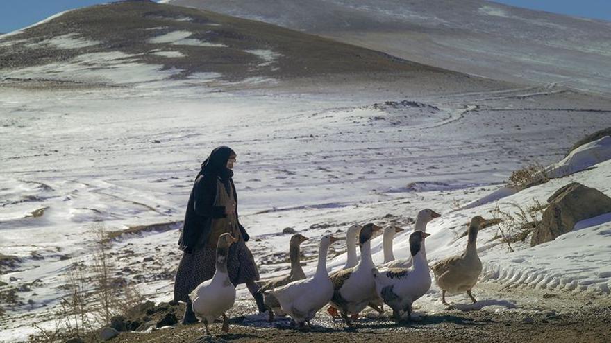 'Kaz Otaran (Gooseherd)', de la realizadora turca Nurhan Özsoy Tasdemir