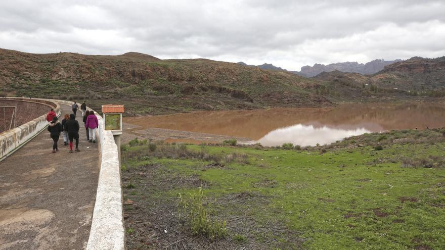 Las presas de Gran Canaria tras el paso de la borrasca Filomena