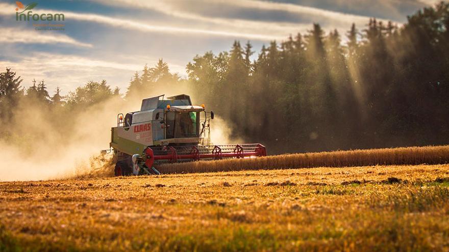 ASAJA interpone un recurso de alzada contra la resolución que prohibió cosechar los días 11 y 12 de julio