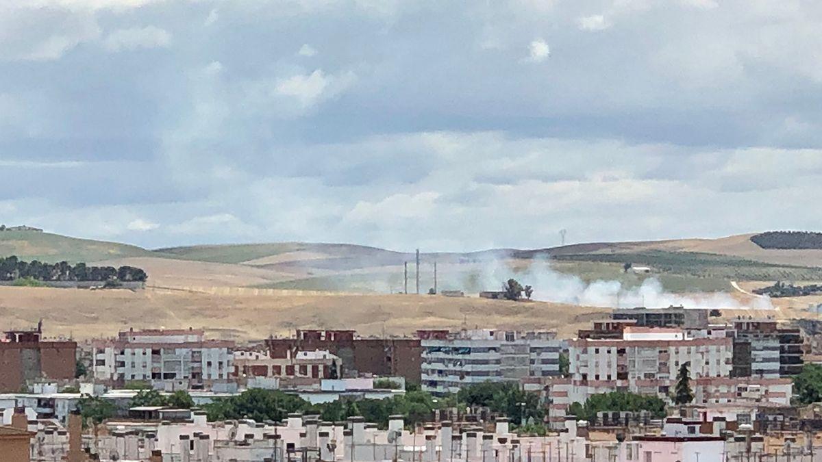 Incendio de pastos en elq ue han actuado los bomberos