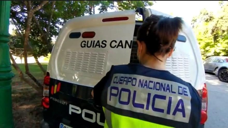 Registran la casa de José Luis Moreno con perros especializados en buscar dinero escondido