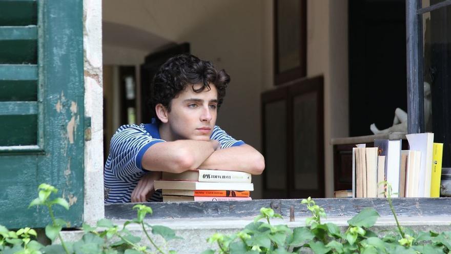 La lectura, el pasatiempo favorito de Timothée Chalamet en 'Call me by your name'