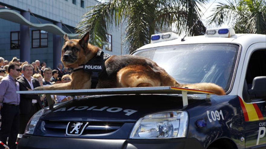 Del acto del Día de la Policía #3