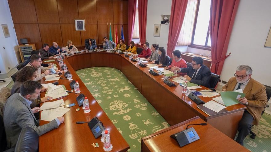 Imagen de la comisión de diputados en el Parlamento andaluz.