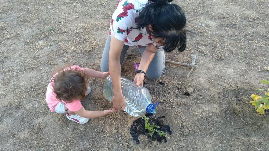 Los vecinos de Alcorcón colaboran en el cuidado de los jardines