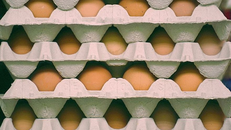 Huevos apilados en cajas de cartón.