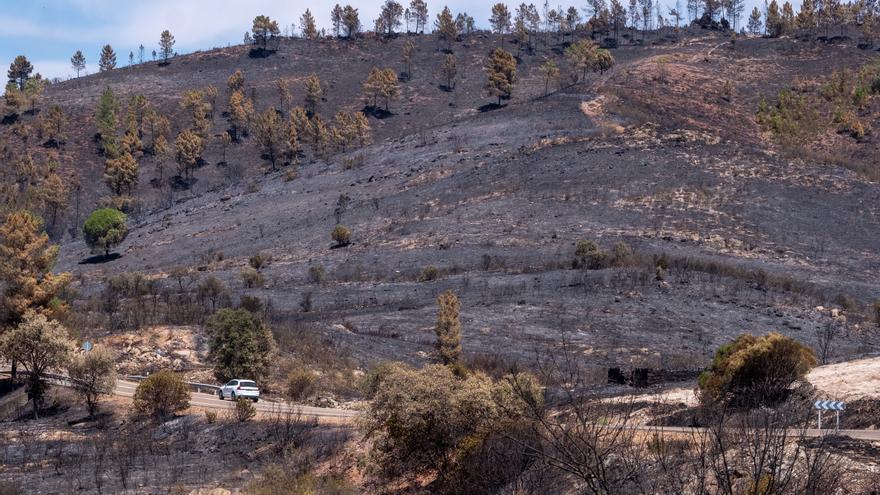 Controlado el incendio de Almonaster (Huelva) tras seis días de trabajos