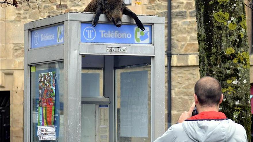 El misterio de la cabina telefónica de Aretxabaleta (Gipuzkoa)